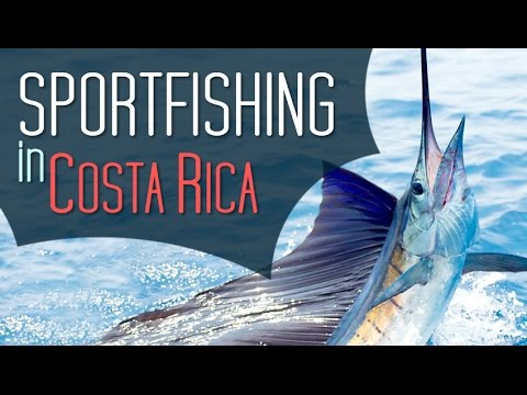 The Best Sportfishing in Costa Rica HD by Frog TV