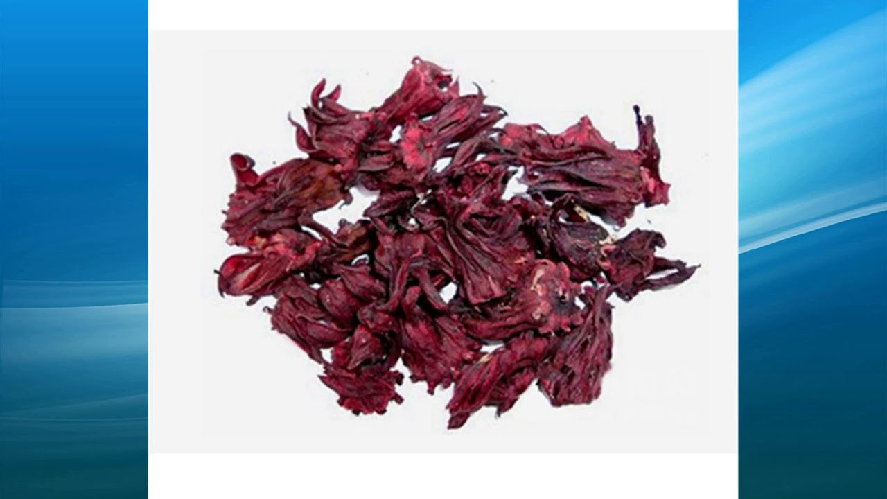 Hibiscus Sabdariffa Extract Supplierwholesalefactorybulk Youtube