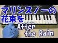 【マリンスノーの花束を】After the Rain そらる×まふまふ 簡単ドレミ楽譜 初心者向け1本指ピアノ