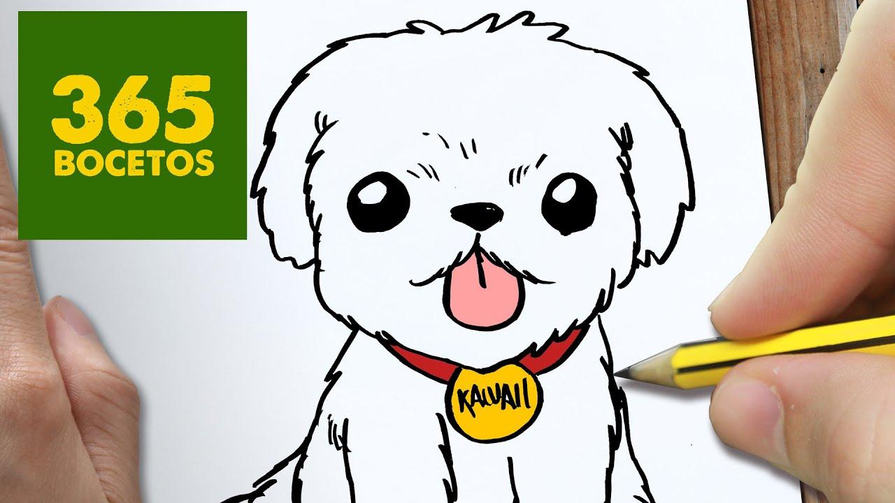 COMO DIBUJAR UN PERRO PASO A PASO Os enseamos a dibujar un perro