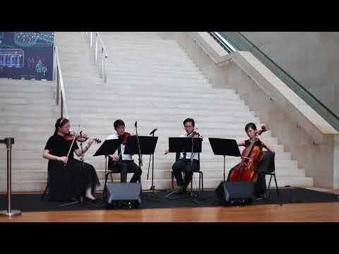 Gliding Dance of the Maidens (Prince Igor) - Borodin - Arpeggione String Quartet (Singapore)