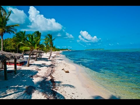 Little Cayman Island Diving Review