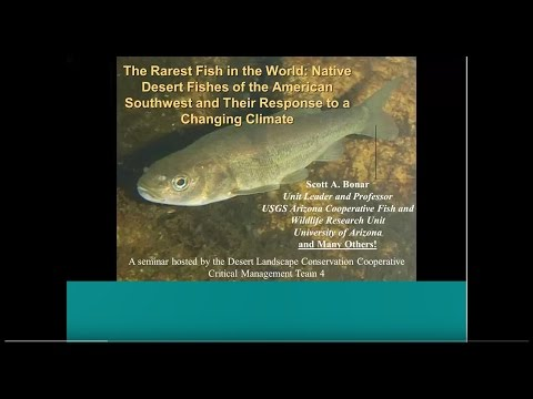 Webinar: The Rarest Fish in the World-Desert Fishes and Their Response to a Changing Climate