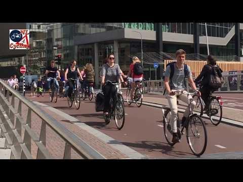 Dutch cycling figures.