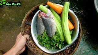 Ẩm Thực Mẹ Nấu Canh Cá Rô Rau Má Với Mướp và Cà Rốt  mtl 132 🌿 Vũ Phong MTL 🌿