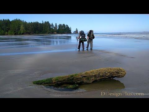 Backng The Washington Coast Ozette Lake To Shi Beach