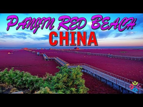 PANJIN RED BEACH CHINA FACTS