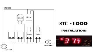 Incubator Temperature Setting STC  1000