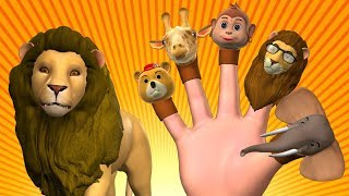 Animal Finger Family 3 | Finger Family Kids Songs - Animals Nursery Rhymes for Children