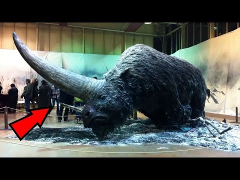 5 Mythical Creatures That Actually Existed!