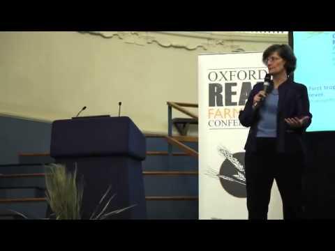 Secrets to Soil Fertility Exposed!