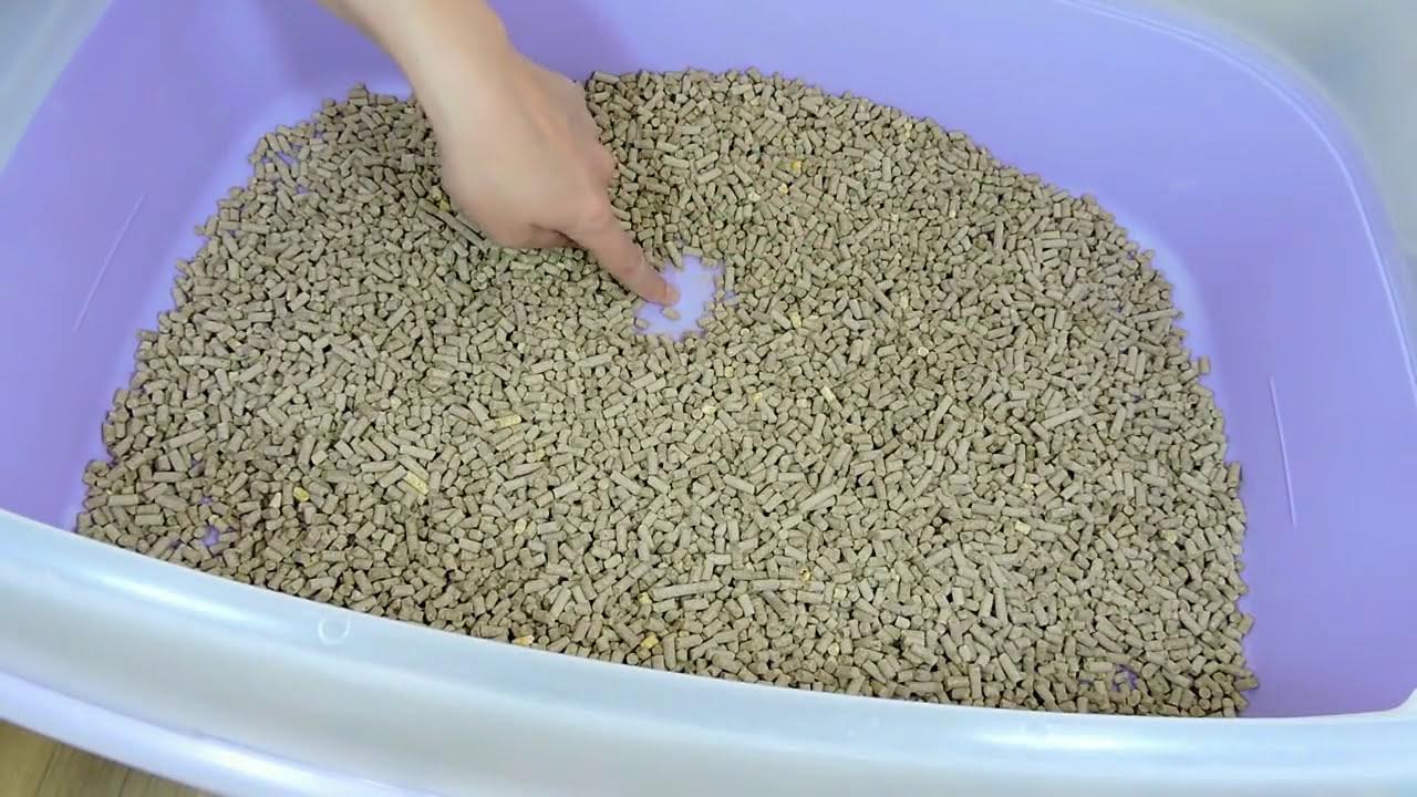 Granulado De Madeira Para Gatos Como Funciona Gatil