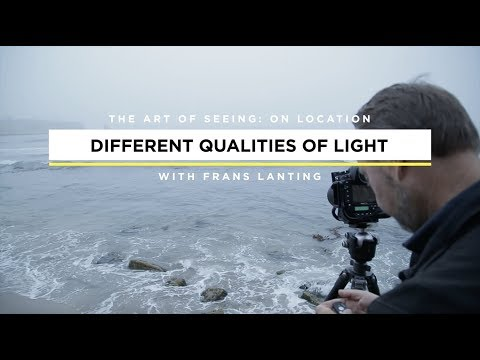 How To Photograph a Landscape Any Time of Day with Frans Lanting | CreativeLive