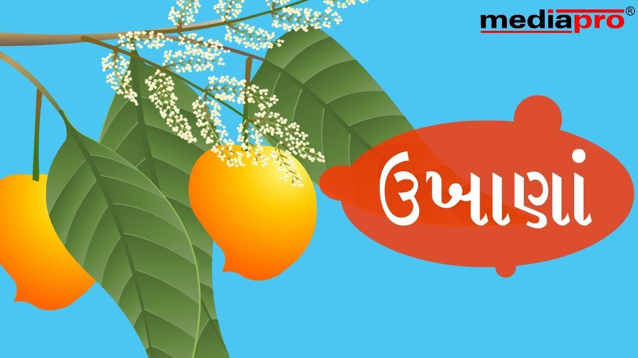 Gujarati dating best ukhane 2021 ☝️ @allapkforfrees