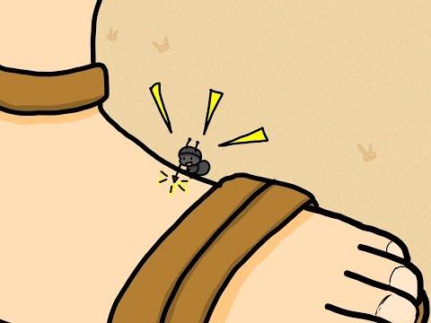 アリに刺された男とヘルメス  (Việt Sub)