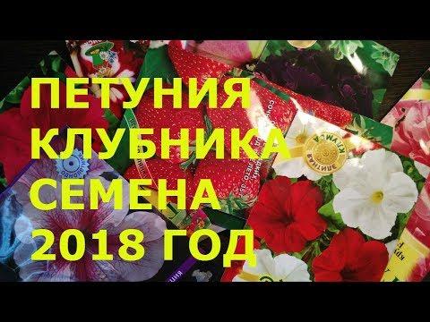 СЕМЕНА ПОЧТОЙ  ОБЗОР СЕМЯН  2018
