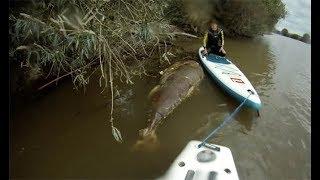 Ninguém acreditaria nessas Pescas, se não fosse gravado!! #3