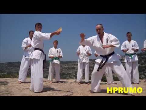 Kyokushin Mix (This is Kyokushin) in HD
