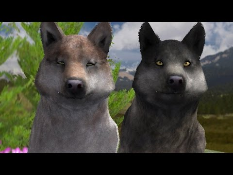 Download Wolf Quest