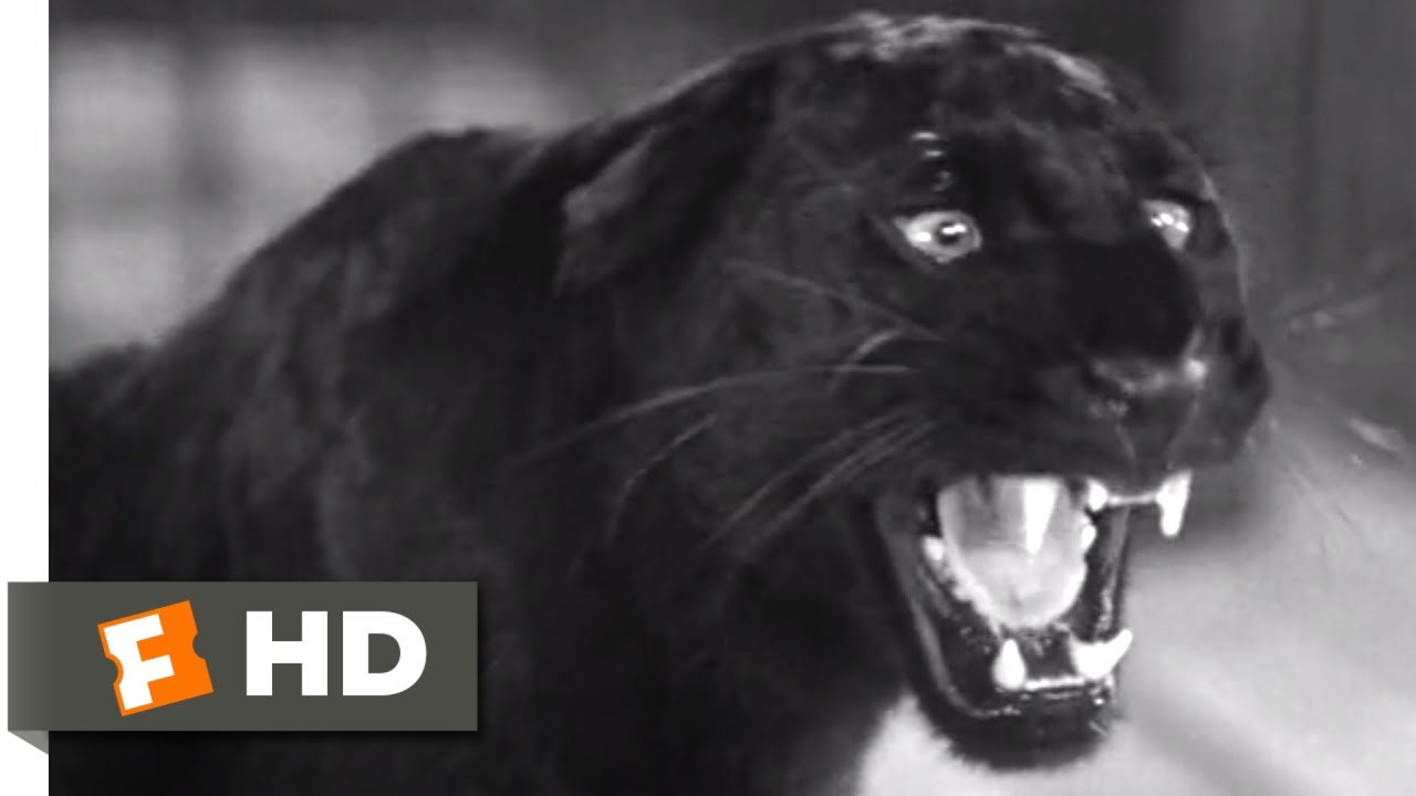 Cat People (1942) - Instrument of Death (3/8) Scene | Movieclips