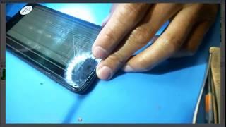 iPhone 8 Plus No Image after DIY Screen Repair