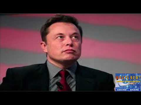 Why Elon Musk might be right about his artificial intelligence warnings.