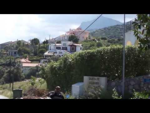 Цвет Агавы на Северном Кипре
