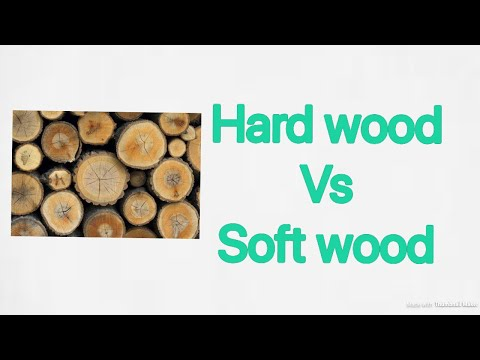 HARDWOOD VS SOFT WOOD IN HINDI