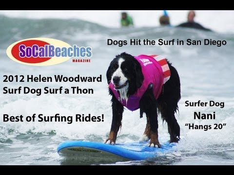 2012 Helen Woodward Dog Surfing Best of Surf Rides