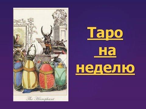 Астрология и Таро с Аллой Бобровой