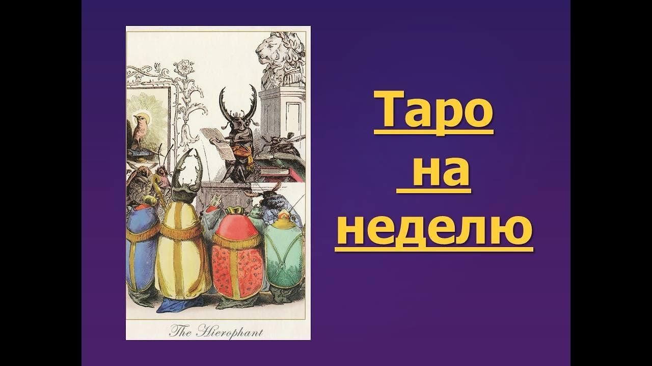 выбору гороскоп таро с 10 по 16 июля пошалить,отдохнуть
