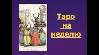 Таро прогноз на неделю с 10 по 16 июля для всех знаков Зодиака