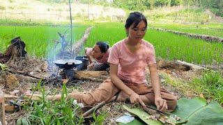 Gadis Dayak    Panen Dan Masak Sayur Pakis Di Hutan Kalimantan