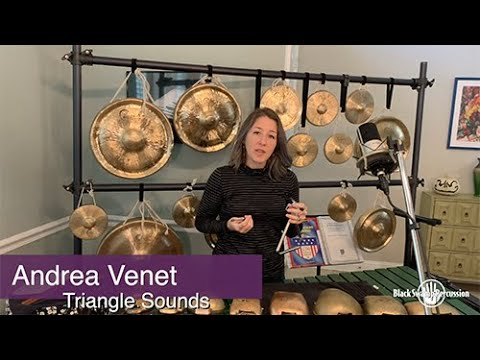 New Andrea Venet Lessons