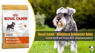 Корм для взрослых собак породы цвергшнауцер · Royal Canin Miniature Schnauzer Adult