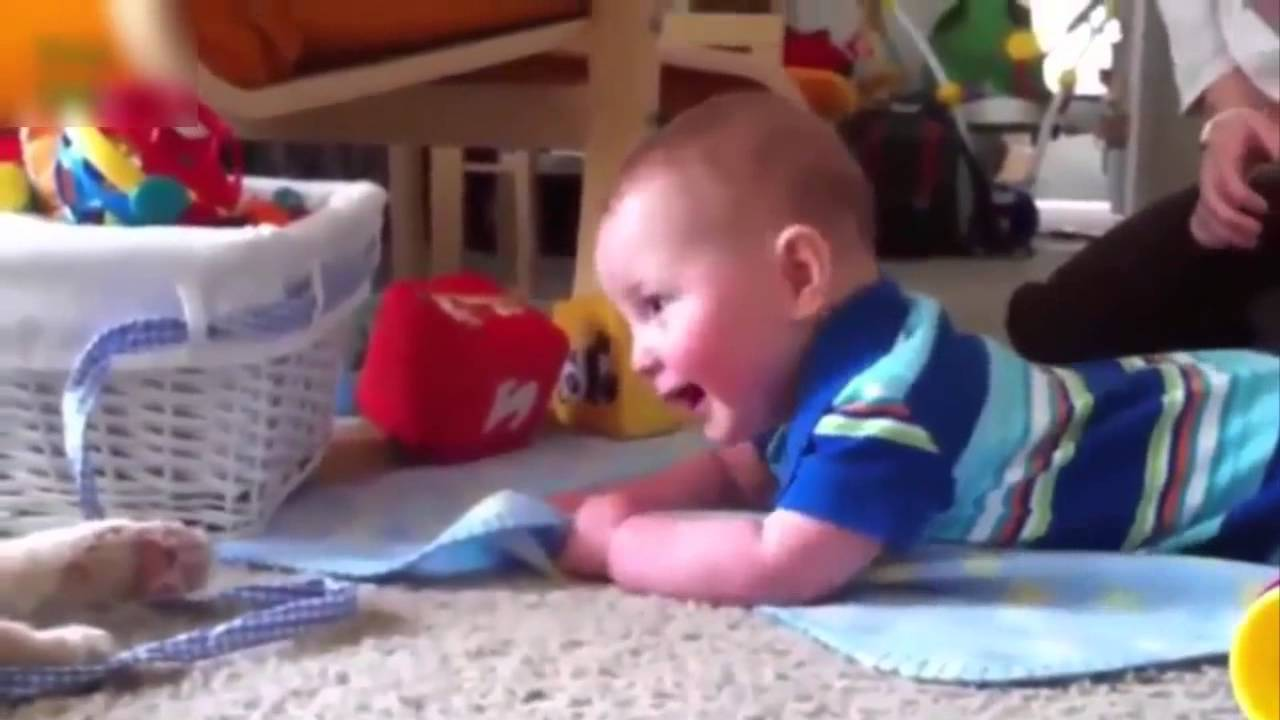 Uncategorized Kids Fun Videos funny videos for kids baby download download
