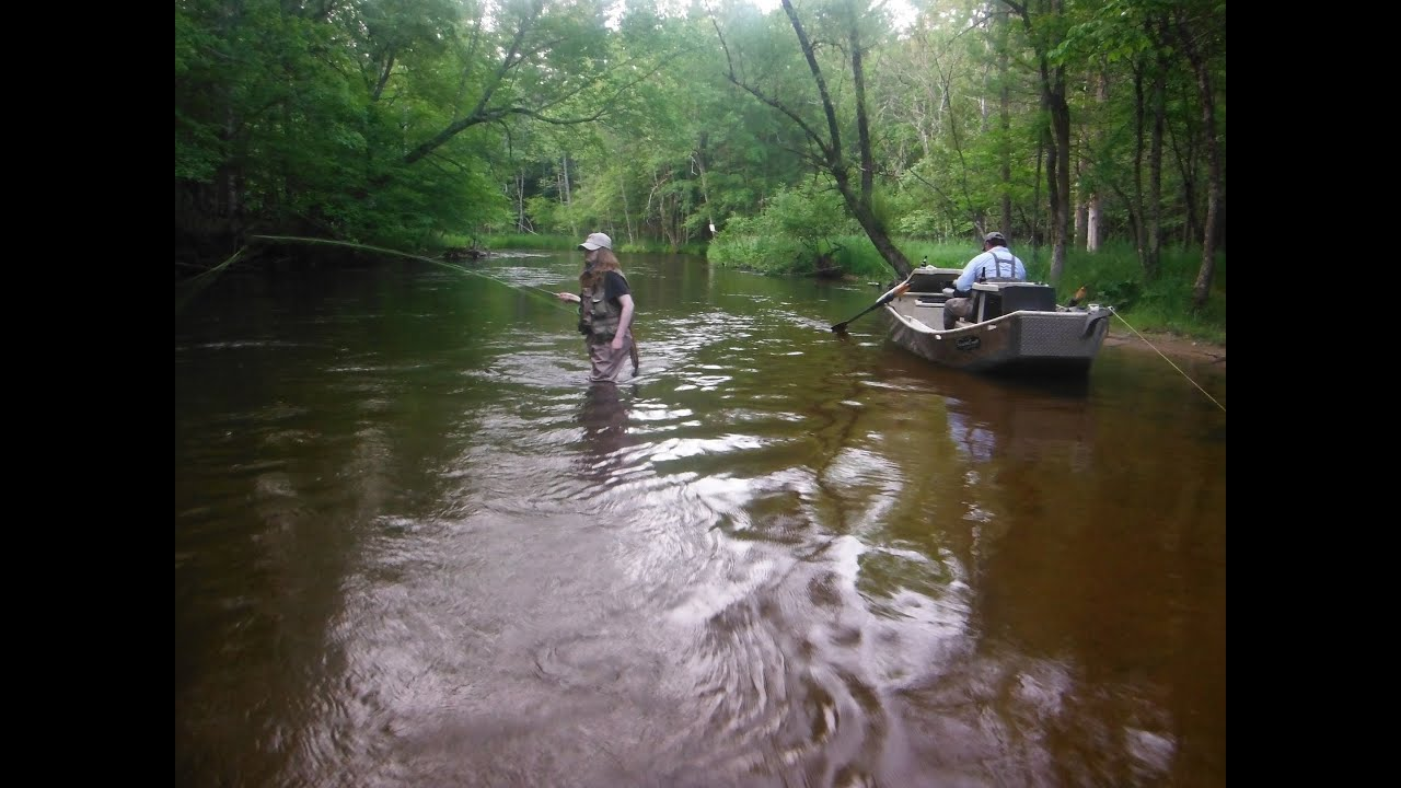 Fly fishing salmon october on pere marquette river for Pere marquette river fishing report