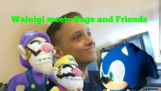 Waluigis World (Waluigi meets Sage and Friends)