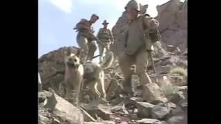 Афганская война хроника