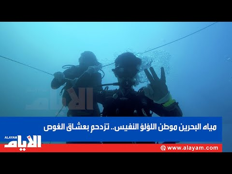 مياه البحرين موطن اللو?لو? النفيس   تزدحم بعشاق الغوص  - 10:59-2020 / 1 / 24