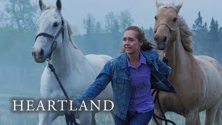 Episode 4 quotThe Eye of the Stormquot First Look  Heartland Season 13