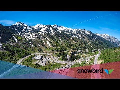 summer-at-snowbird