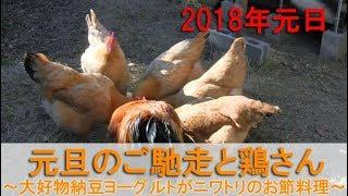2018年1月1日、元旦。 我が家の名古屋コーチンに納豆ヨーグルトをご馳走...
