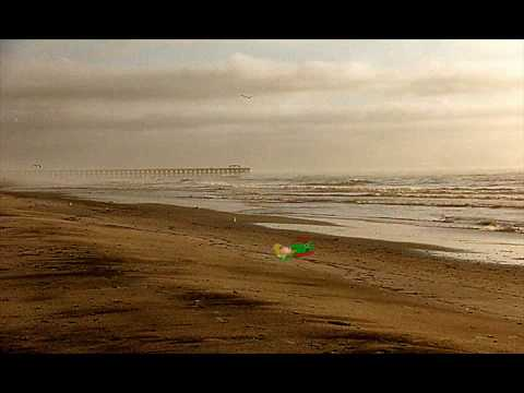 Link Beached.wmv