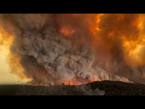 video: Australia is burning - but why are the bushfires so bad and is climate change to blame?