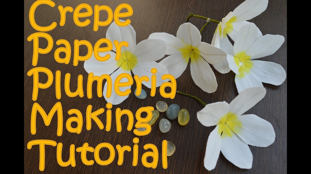 Crepe paper plumeria flower making tutorial youtube izmirmasajfo