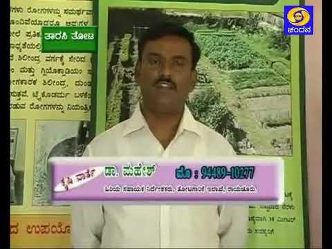 1.30pm-Krishivarthe- ಕೃಷಿವಾರ್ತೆ
