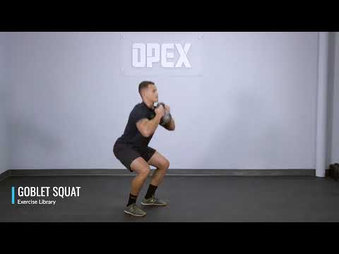 Goblet Squat - OPEX Exercise Library