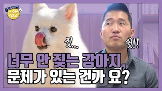Should I Be Concerned If My Dog Doesn't Bark Much? | Kang Hyung-wook's Trivia Q&A