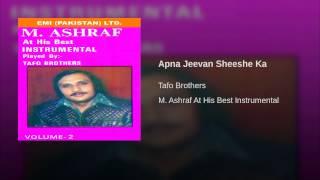 Apna Jeevan Sheeshe Ka
